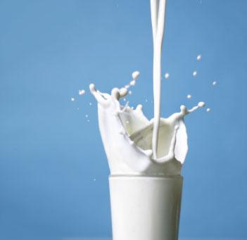 r duire son empreinte cologique trouver une alternative au lait de vache blog maison. Black Bedroom Furniture Sets. Home Design Ideas